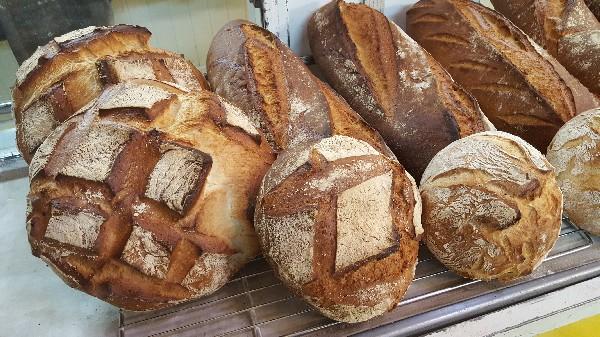 nos pains biologiques